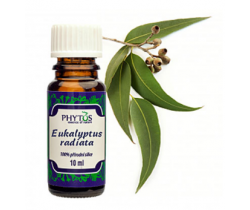 Vonný olej 10 ml Phytos Eucalyptus Radiata